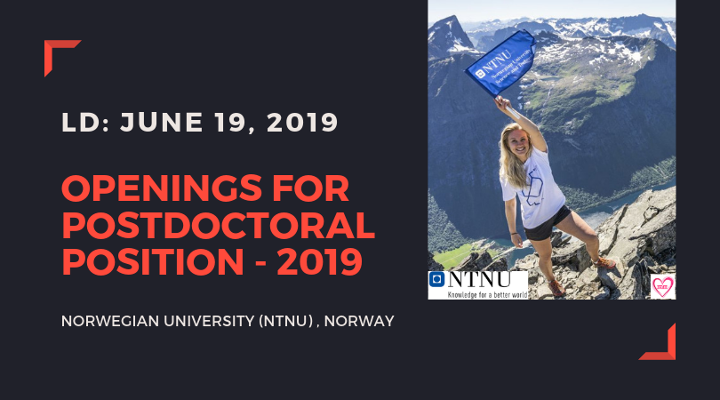 Openings for Postdoctoral Position 2019 at Norwegian