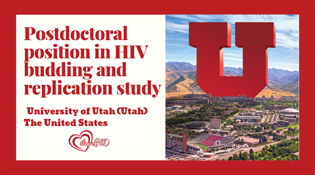 Postdoctoral position in HIV budding and replication study